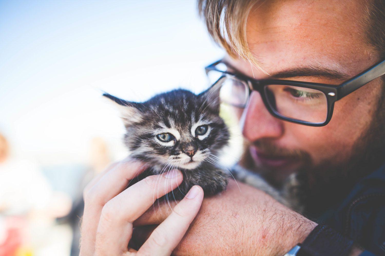 Mit der Promotion Agentur Freudebringer die Zielgruppe der Tierfreunde und Tierbesitzer erreichen.